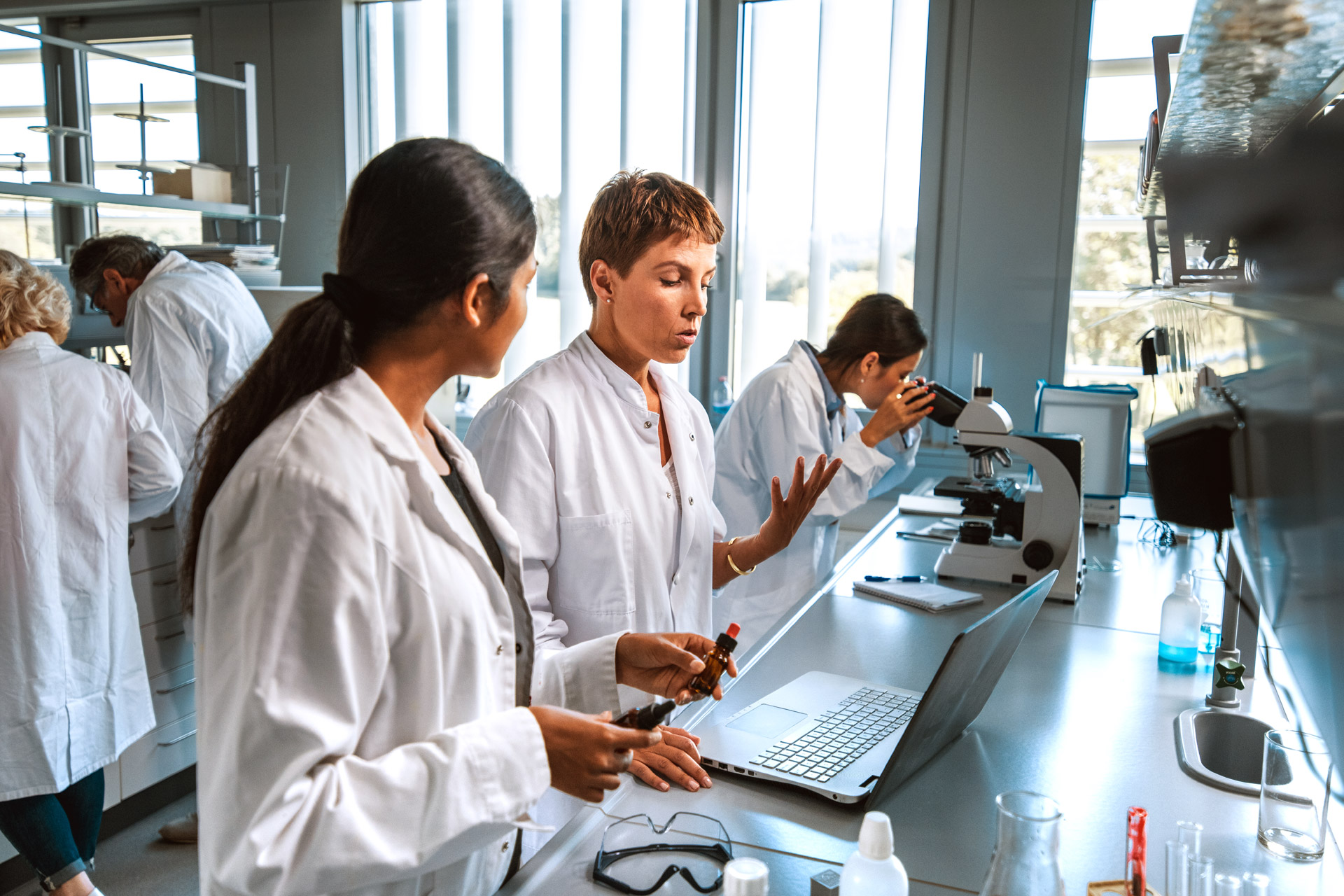 Scientists at work in a lab